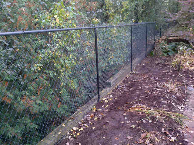 Residential Chain Link Fence #3
