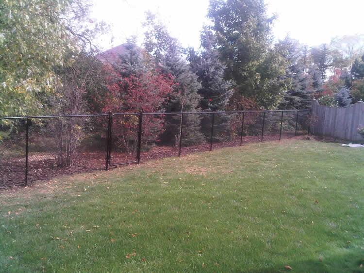 Residential Chain Link Fence #7
