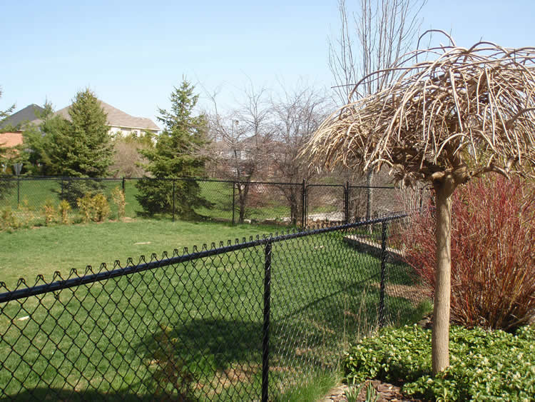 Residential Chain Link Fence #9