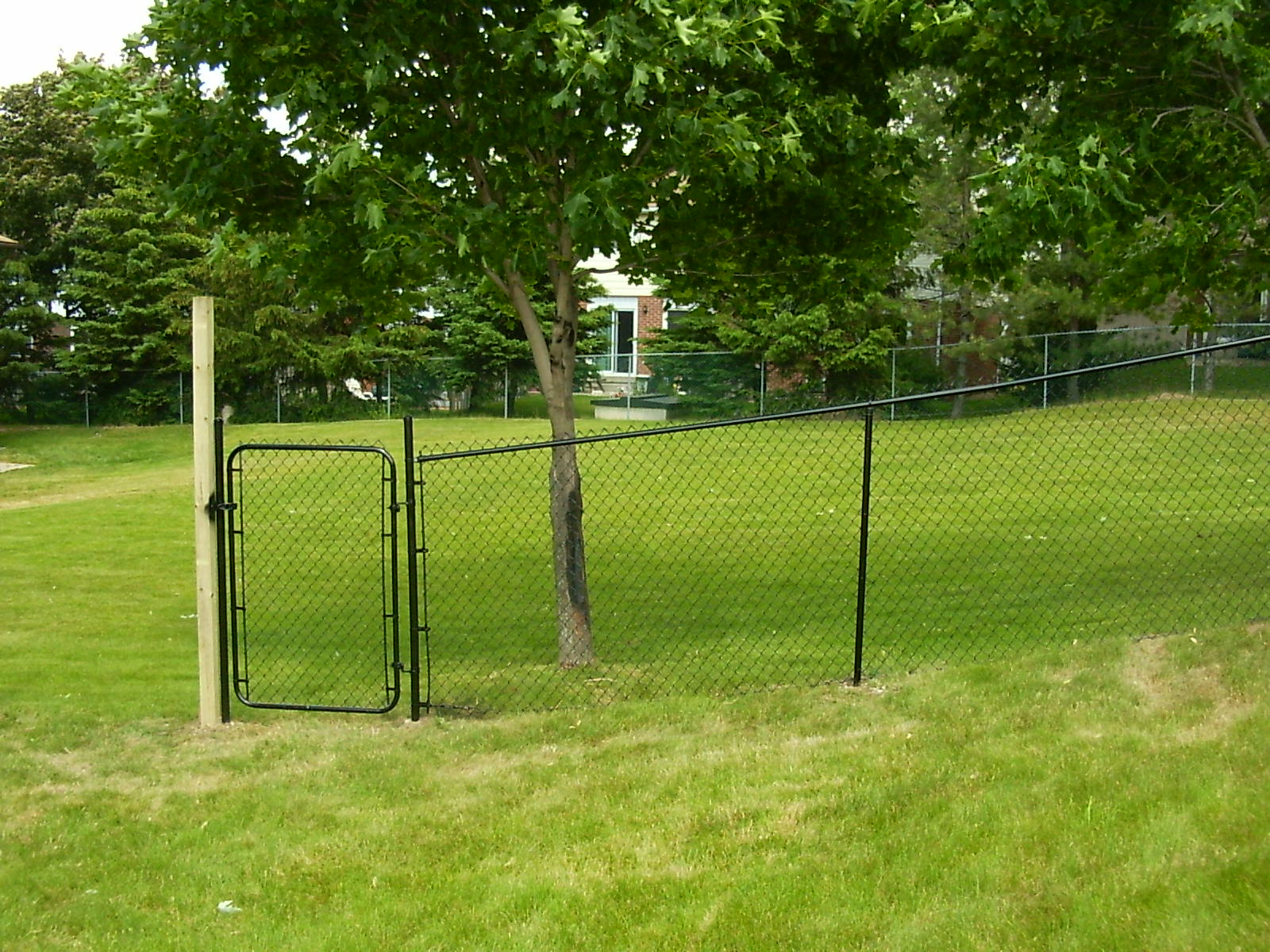 Residential Chain Link Fence #13