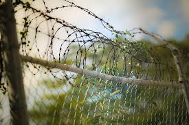 electric barbwire fence
