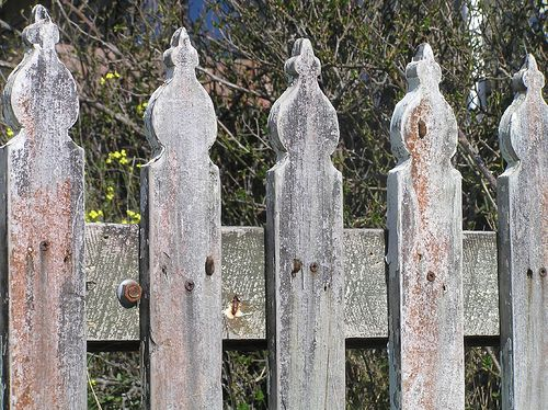 spade style picket fence design