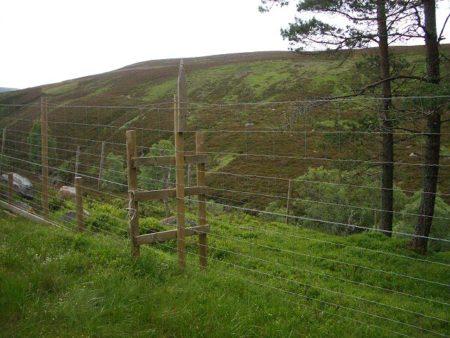 deer farm fence